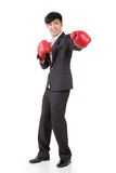 Boxing businessman Royalty Free Stock Photo