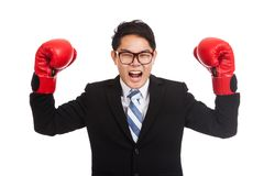 Asian businessman satisfy with red boxing glove. Isolated on white background Royalty Free Stock Photography