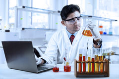 Asian chemist working in laboratory Royalty Free Stock Photos