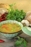 Asian chicken consomme Royalty Free Stock Images
