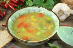 Asian chicken consomme with vegetables. And parsley Royalty Free Stock Image