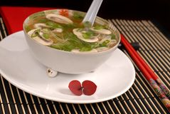 Asian chicken, glass noodle and rice soup with mushrooms and sca. Llions in antique bowl Royalty Free Stock Images