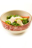 Asian Chicken Salad Royalty Free Stock Image