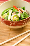 Asian Chicken Salad Royalty Free Stock Images