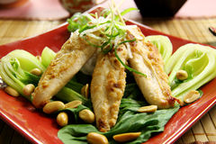 Asian Chicken Skewers. On a bed of Chinese vegetables ready to serve royalty free stock photo