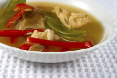 Asian Chicken Soup Royalty Free Stock Photography