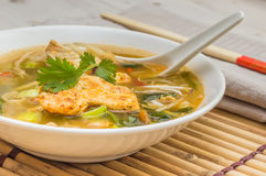 Asian chicken soup with vegetables Royalty Free Stock Images