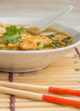 Asian chicken soup with vegetables Stock Image
