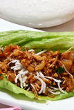 Asian Chicken Wrap Royalty Free Stock Photos