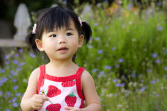Asian child Stock Photography