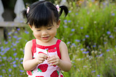 Asian child Royalty Free Stock Photo
