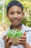 Asian Child Enjoy with Vegetable. Asian child enjoy with a bowl of vegetable is sunflower sprouts Stock Images