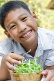 Asian Child Enjoy with Vegetable. Asian child enjoy with a bowl of vegetable is sunflower sprouts Stock Image