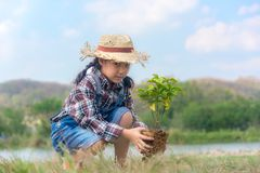 Asian Child girl plant sapling tree in the nature spring for reduce global warming growth feature. And take care nature earth, blue sky background royalty free stock photos
