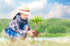 Asian child girl plant sapling tree in the nature spring for reduce global warming growth feature,. Reduce global warming and take care nature earth,  blue sky Royalty Free Stock Photo