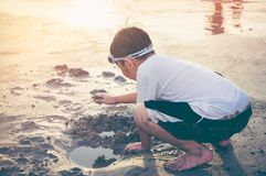 Asian child has fun digging in the sand. Young boy enjoying on b Stock Photo