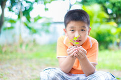 Asian child holding young seedling plant in hands, in garden, on Stock Photography