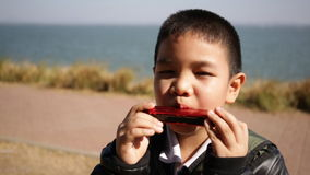 Asian child playing harmonica, mouth organ stock video footage