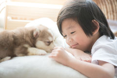 Asian child playing with siberian husky puppy Royalty Free Stock Image
