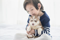 Asian child and siberian husky puppies lying Stock Photo