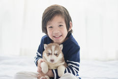 Asian child and siberian husky puppies lying Royalty Free Stock Photo