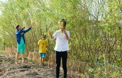 Asian children, bong dien dien, Sesbania sesbana, Mekong Delta Stock Images