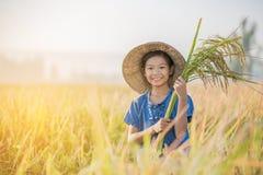 Asian children farmer on yellow rice field Stock Photo