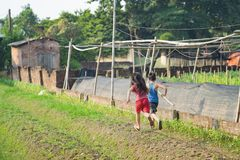 Asian children running on vegetable field in countryside.  Stock Photos