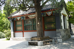 Asian China, antique building, courtyard Stock Photos