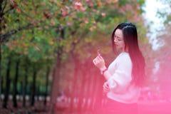 Asian china beautiful woman in autumn park Stock Photos
