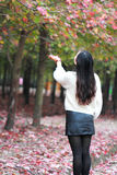 Asian china beautiful woman in autumn park Royalty Free Stock Photography