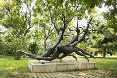 Asian China, Beijing, International Sculpture Park, run Stock Photography