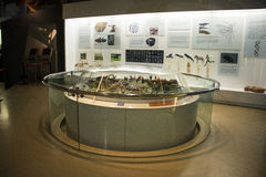 Asian China, Beijing, National Animal Museum� Royalty Free Stock Photography