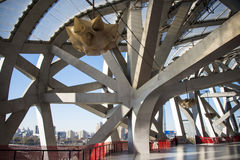 Asian China, Beijing, National Stadium, interior steel structure Royalty Free Stock Photo