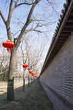 Asian China, Beijing, Yuetan Park,Wall, tree, red lanterns Royalty Free Stock Photography
