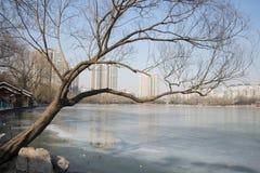Asian China, Beijing, Zizhuyuan Park Royalty Free Stock Photos