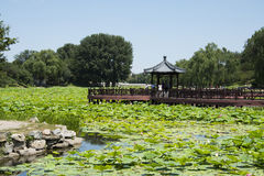 Asian China, royal garden, Old Summer Palace, Jiuqu Bridge Royalty Free Stock Photos