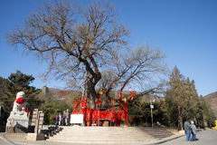 Asian Chinese, Beijing, Badachu, park, historic buildings Royalty Free Stock Images