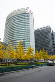 Asian Chinese, Beijing, Financial Street, modern architecture, ginkgo tree Royalty Free Stock Photos