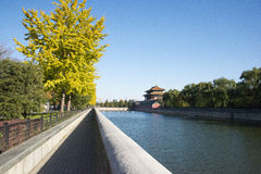 Asian Chinese, Beijing, historic buildings, the Imperial Palace watchtower, moat, ginkgo leaves Stock Photo