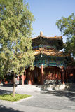 Asian Chinese, Beijing, historic buildings, The Lama Temple. Asian Chinese, Beijing, Lama Temple, temples of Tibetan Buddhism, its architectural style is very Royalty Free Stock Images