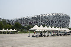 Asian Chinese, Beijing National Stadium, the bird's nest, Royalty Free Stock Photos