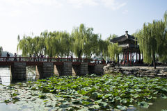 Asian Chinese, Beijing, the Summer Palace,zhi chun ting Stock Image
