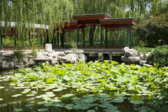 Asian Chinese, Beijing, the zoo, the ancient architecture, peony garden, corridor. China Asia, Beijing, the zoo's ancient architecture, peony garden, Huanlang Stock Photography
