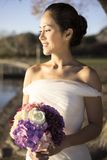 Asian chinese bride in wedding gown in nature Stock Photography