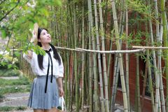 Asian Chinese Happy young cute adorable lovely student youth in a park garden outdoor in summer royalty free stock photos