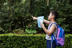 Asian Chinese little boy holding map pointing in the forest Royalty Free Stock Images