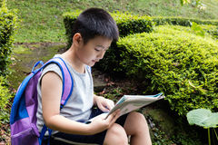 Asian Chinese little boy holding map sitting in the forest Stock Images