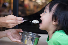 Asian Chinese little girl eating steamed minced pork and rice Royalty Free Stock Photography