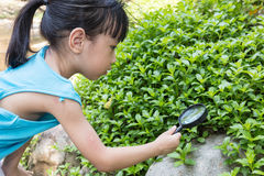Asian Chinese little girl exploring grass with magnifying glass Stock Photos